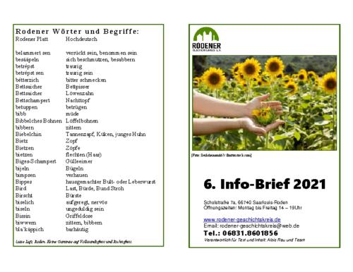 Info-Brief 06-2021